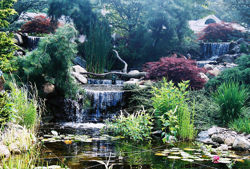 Earth___Water_Res.2__48_x_18_display_pond